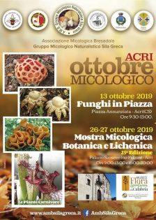 Mostra Micologica 26-27 ottobre